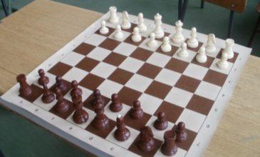 Šahom do znanja i razonode